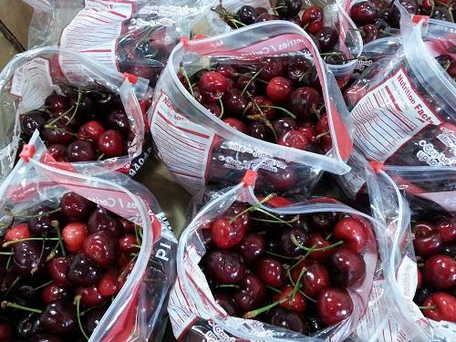 Cherries resized twitter design