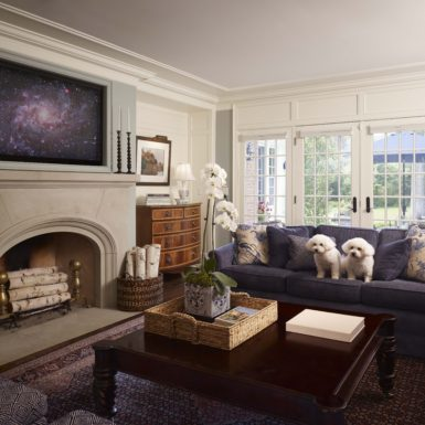 dogs on couch in northfield illinois home with french doors and fireplace