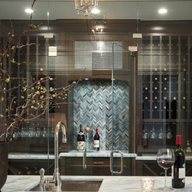 chicago home glass enclosed wine cellar with wet bar