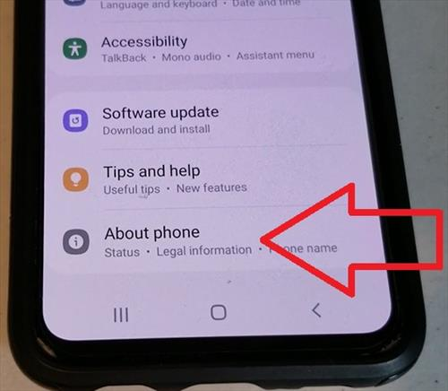 How To Enable Developer Options Galaxy S10 Step 2