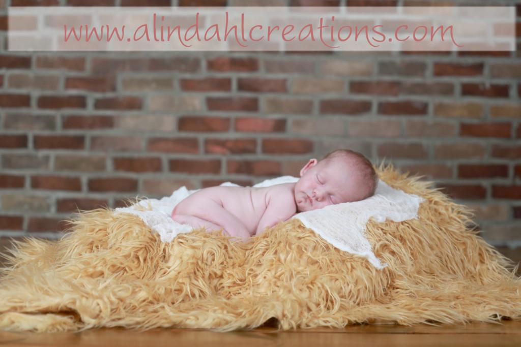 Grand Rapids MI newborn Photographer