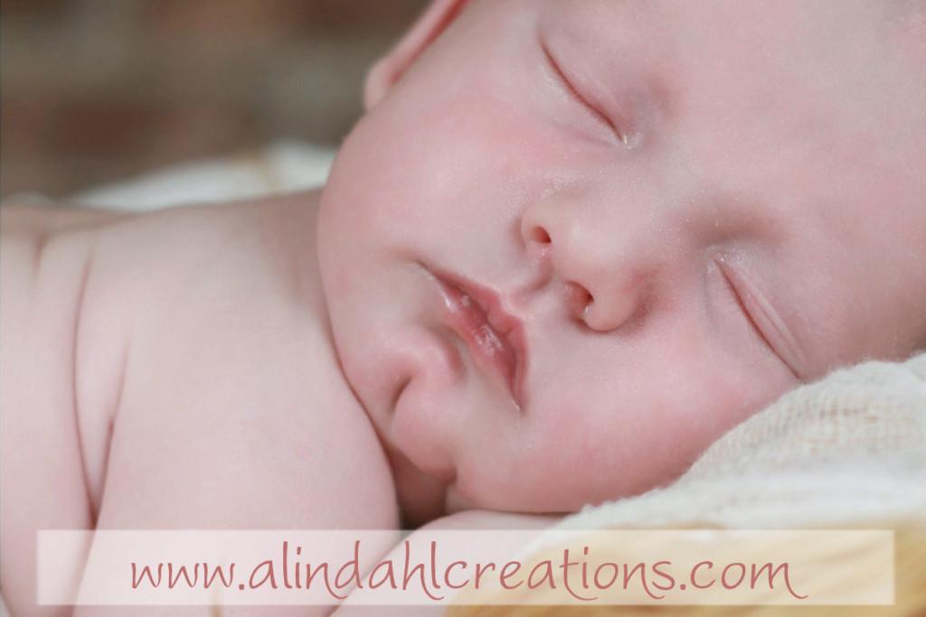 south haven MI newborn Photographer