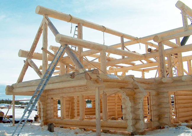 Handcrafted Log Home Kit