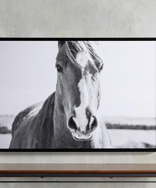 Caballo Framed Horse Print