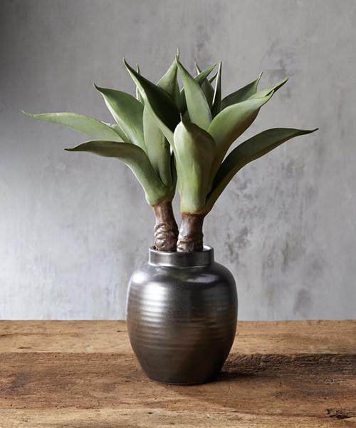 Faux Aloe in Vase