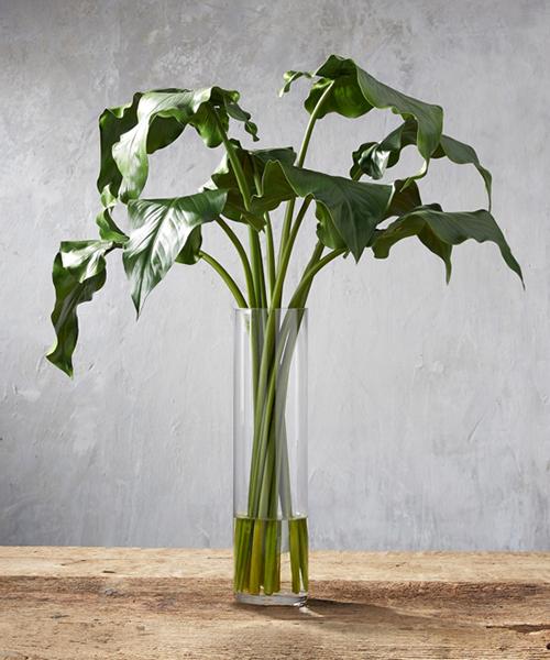 Faux Calla Leaf