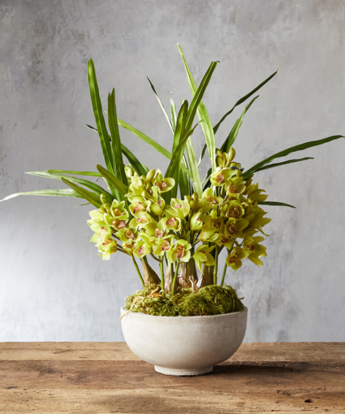 Faux Green Orchid