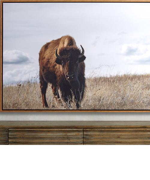 Great Plains Framed Print