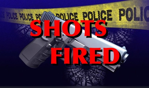 Report of Shots Fired on Clark Street