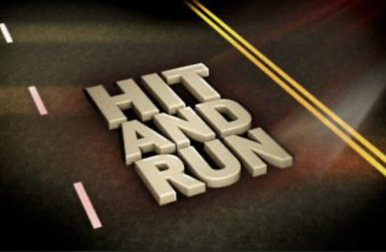 HPD Reports: Hit&Run, Fraud, and More