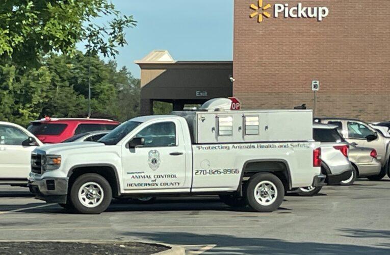 Animal Control Responds to Walmart, Again..