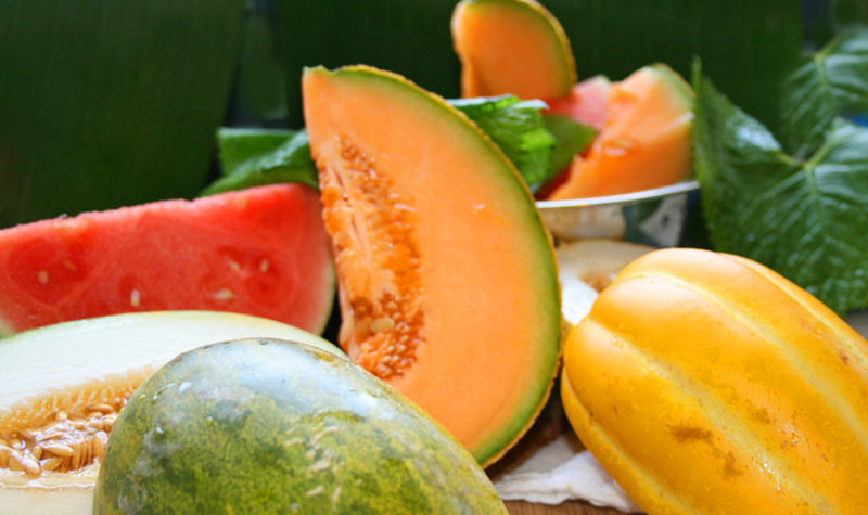 How to Find the Right Melon