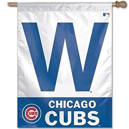 chicago-cubs-fan-w-flag
