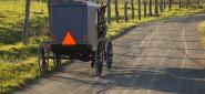 [Article] Despite Isolation, Amish Succumb to Polarization Impulse