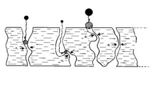 Depth Filtration - Sieving