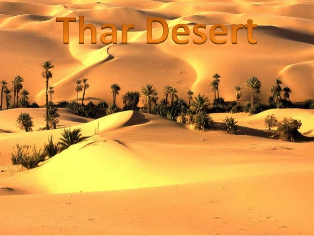 Travelling you would see between the sand dunes some seeds sown into the ground which includes parley, peanuts, sesame
