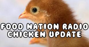 Farmer Mikes Chicken Update