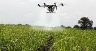 spray crops ead