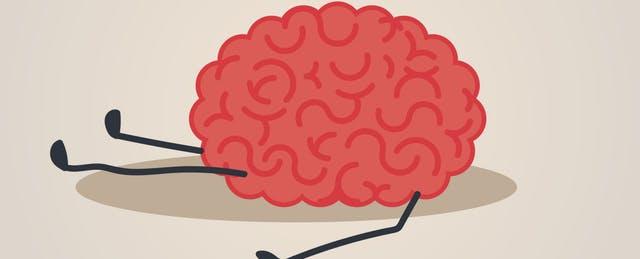 a drawing a brain