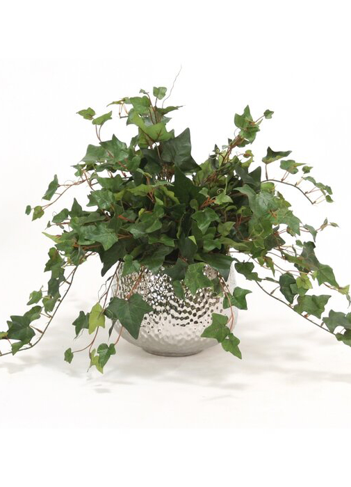 Faux Mountain Ivy in Silver Pot