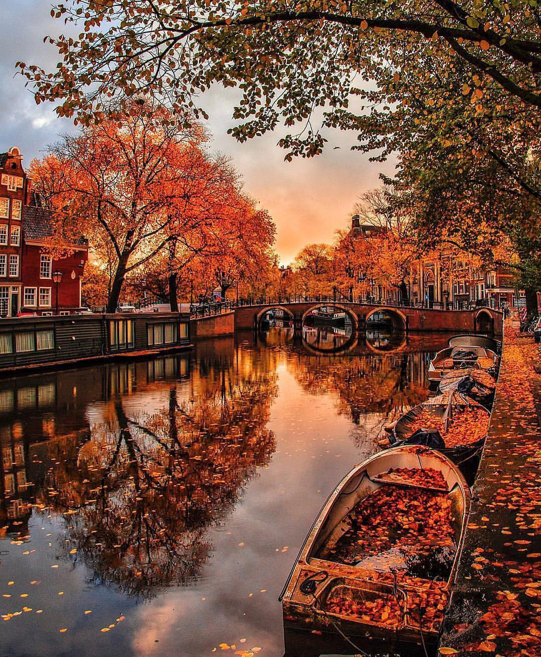Amsterdam in the Fall