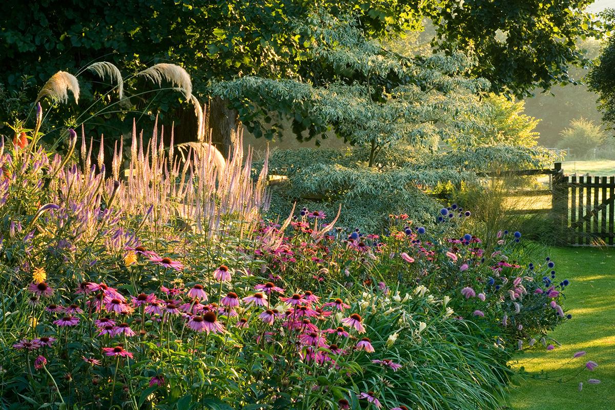 Rustic Backyard Landscaping Ideas
