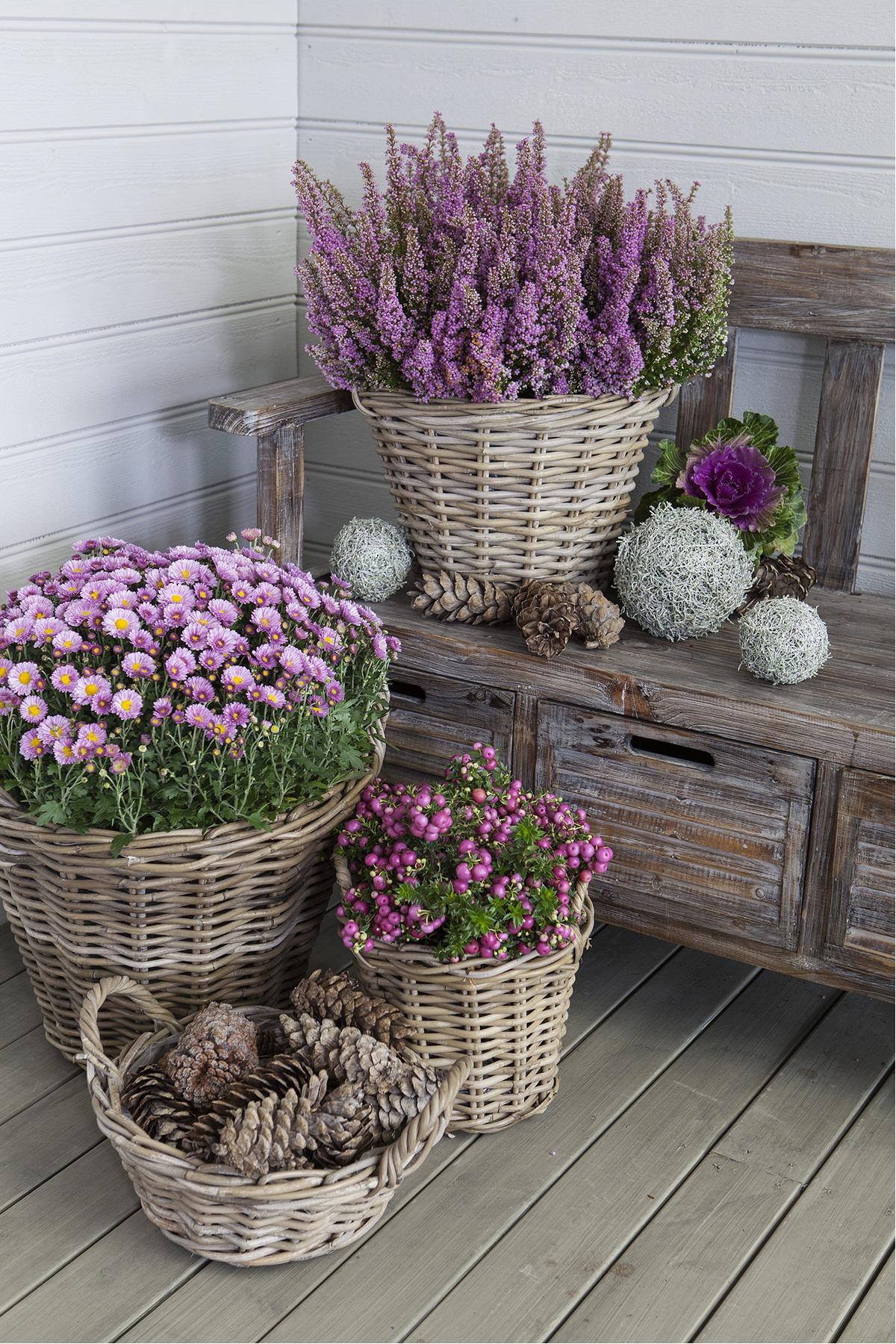 Farmhouse Porch Ideas