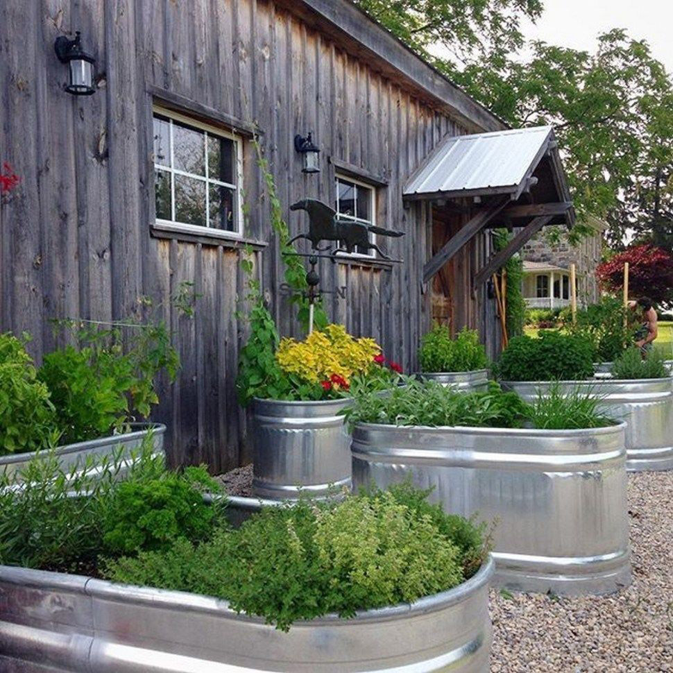 Troughs as Rustic Planters