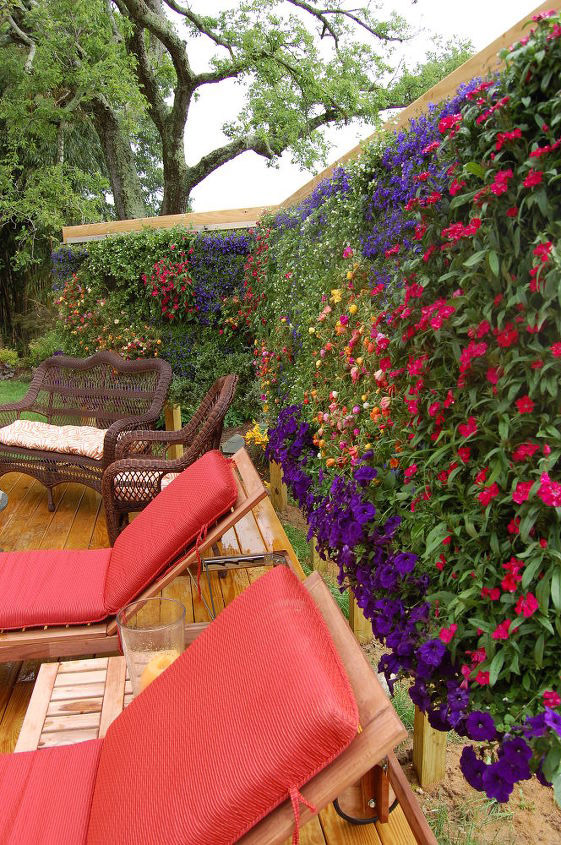 Wall of Flowers   Landscaping Ideas