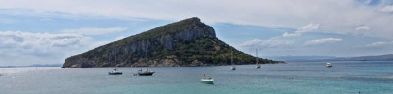 Gavinedda Island