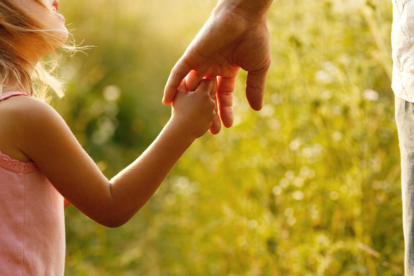 Everything You Need to Know about Child Custody Investigations