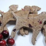 Apple Cranberry Dog Treat/Biscuit Recipe DoggyDessertChef.com