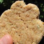 creamy chicken dog treat/biscuit recipe