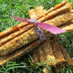 Fruit & Veggie Sticks Dog Treat/Biscuit Recipe