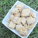 (wheat-free) bacon chicken mini-biscotti dog treat/biscuit recipe