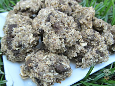 (wheat and dairy-free) liver apple dog treat/biscuit recipe
