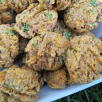 (wheat and gluten-free) beef bourguignon dog treat/biscuit recipe