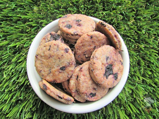 (wheat-free) blueberry goat cheese dog treat/biscuit recipe