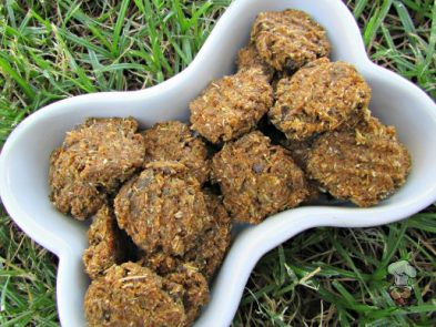 (dairy-free) butternut squash liver dog treat/biscuit recipe
