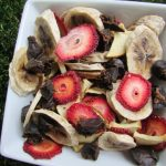 (wheat, gluten, grain and dairy-free) chicken liver & fruit trail mix dog treat recipe