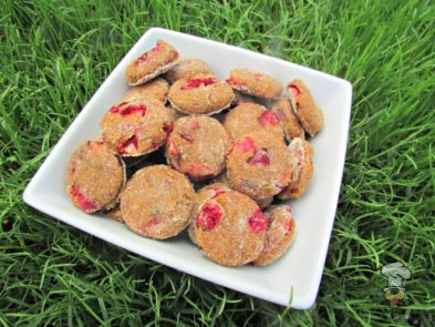 (dairy-free) cranberry butternut squash dog treat/biscuit recipe