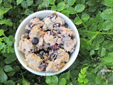(wheat, gluten and dairy-free) blueberry ham dog treat/biscuit recipe