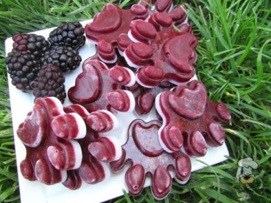 (wheat, gluten, grain and dairy-free, vegan, vegetarian) frozen blackberry coconut dog treat recipe