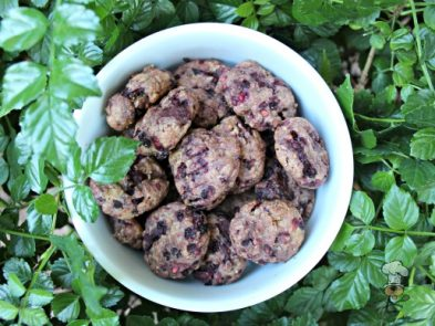 (wheat and dairy-free) blackberry peanut butter dog treat/biscuit recipe