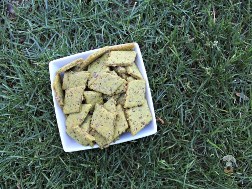 (wheat, gluten and dairy-free) coconut beef dog treat/biscuit recipe