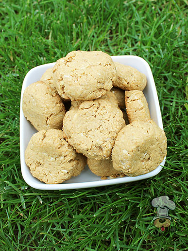 (wheat and dairy-free) sunflower peanut butter dog treat recipe