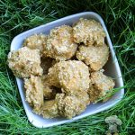 (wheat and dairy-free, vegan and vegetarian) sweet potato apple oat dog treat/biscuit recipe