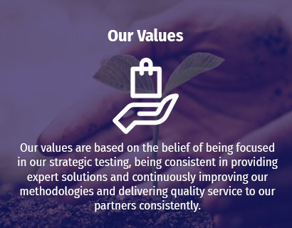 Our Values | RAS Infotech