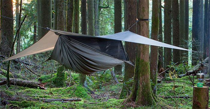 hennessy expedition hammock