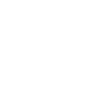 rubicon5-cisco-premier-partner-white